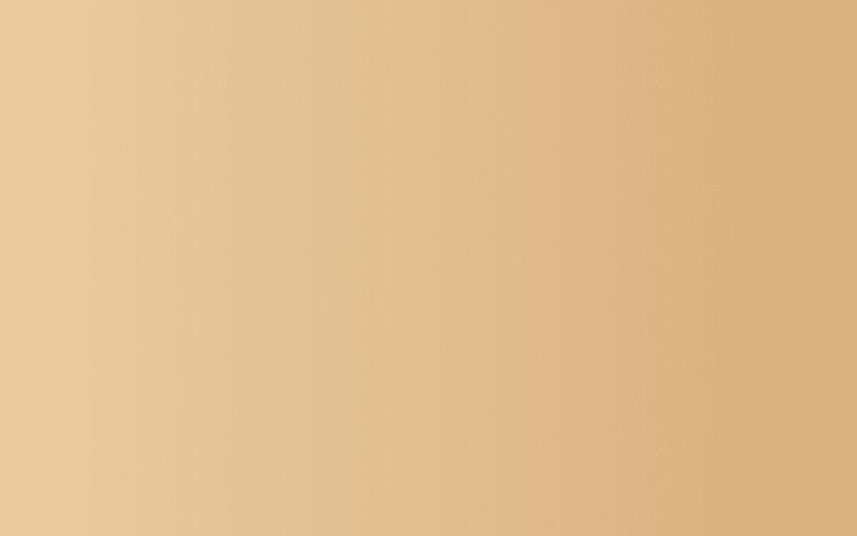 14. bois pâle